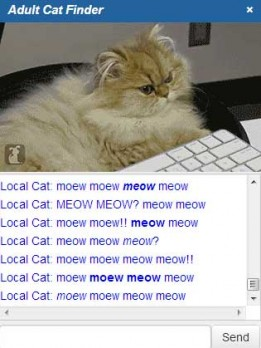 adult_cat_finder1
