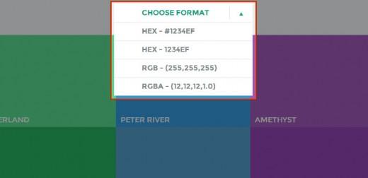 カラーコードの形式を選択