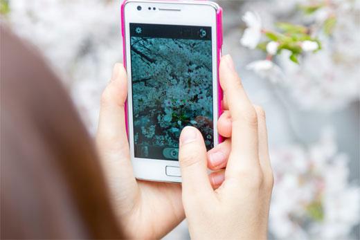 スマートフォンとPCで表示するコンテンツを切り替える手順