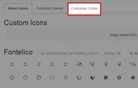 Customize Codes