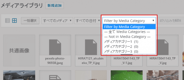 メディアファイルの絞り込み