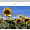 1色選ぶといい感じの配色を生成してくれるWEBサービス「ウェブ配色ツール Ver3 by フォルトゥナ」