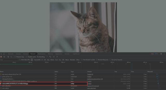 WebP Converter for Mediaデベロッパーツールで画像フォーマットを確認